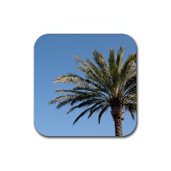 Tropical Palm Tree  Rubber Square Coaster (4 Pack)