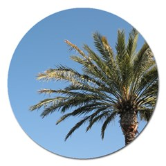 Tropical Palm Tree  Magnet 5  (round)