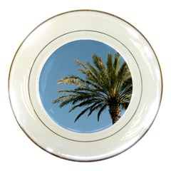 Tropical Palm Tree  Porcelain Plates