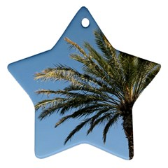 Tropical Palm Tree  Star Ornament (two Sides)