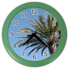 Tropical Palm Tree  Color Wall Clocks