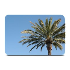 Tropical Palm Tree  Plate Mats