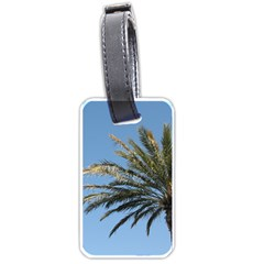 Tropical Palm Tree  Luggage Tags (One Side)
