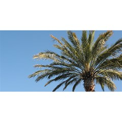 Tropical Palm Tree  You Are Invited 3d Greeting Card (8x4)