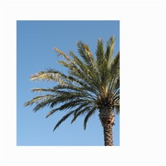 Tropical Palm Tree  Small Garden Flag (two Sides)