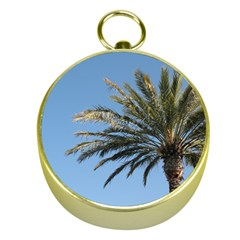 Tropical Palm Tree  Gold Compasses