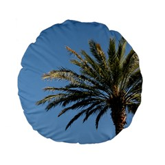 Tropical Palm Tree  Standard 15  Premium Flano Round Cushions