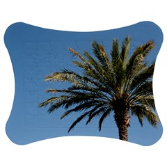 Tropical Palm Tree  Jigsaw Puzzle Photo Stand (bow)
