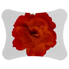 Red Rose Photo Jigsaw Puzzle Photo Stand (bow)