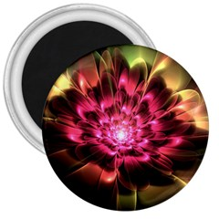 Red Peony 3  Magnets