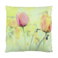 Softness Of Spring Standard Cushion Case (Two Sides)