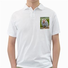 Grey Monkey  Golf Shirts