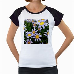 Yellow White Daisy Flowers Women s Cap Sleeve T