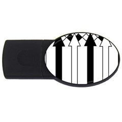 Funny Black and White Stripes Diamonds Arrows USB Flash Drive Oval (4 GB)