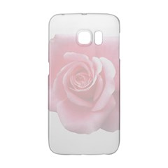 Pink White Love Rose Galaxy S6 Edge