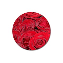 Red Love Roses Magnet 3  (Round)