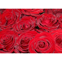 Red Love Roses Birthday Cake 3D Greeting Card (7x5)