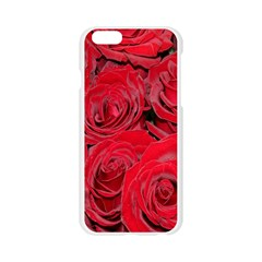 Red Roses Love Apple Seamless iPhone 6/6S Case (Transparent)
