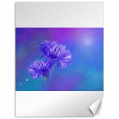 Purple Cornflower Floral  Canvas 12  x 16
