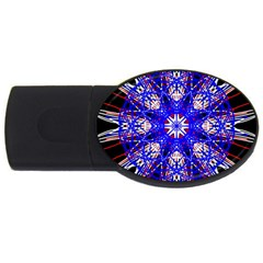 Kaleidoscope Flower Mandala Art Black White Red Blue Usb Flash Drive Oval (2 Gb)