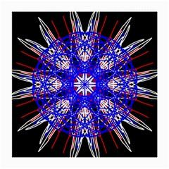 Kaleidoscope Flower Mandala Art Black White Red Blue Medium Glasses Cloth (2 Side)