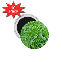 Festive Chic Green Glitter Shiny Glamour Sparkles 1.75  Magnets (10 pack)