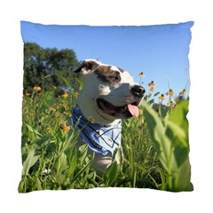 Pit Bull T Bone Standard Cushion Case (two Sides)