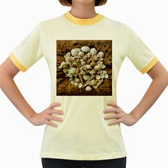 Tropical Sea Shells Collection, Copper Background Women s Fitted Ringer T Shirts