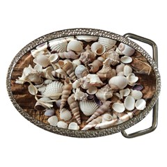 Tropical Sea Shells Collection, Copper Background Belt Buckles