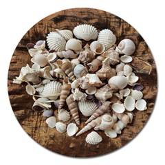 Tropical Sea Shells Collection, Copper Background Magnet 5  (Round)