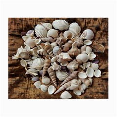 Tropical Sea Shells Collection, Copper Background Small Glasses Cloth
