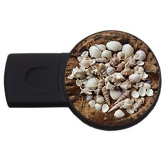 Tropical Sea Shells Collection, Copper Background USB Flash Drive Round (4 GB)
