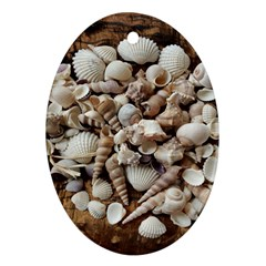 Tropical Sea Shells Collection, Copper Background Oval Ornament (Two Sides)