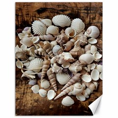Tropical Sea Shells Collection, Copper Background Canvas 18  x 24