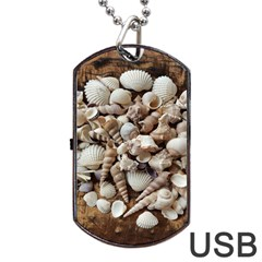 Tropical Sea Shells Collection, Copper Background Dog Tag USB Flash (One Side)