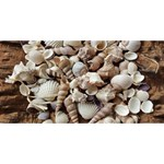 Tropical Sea Shells Collection, Copper Background Twin Heart Bottom 3D Greeting Card (8x4)  Front