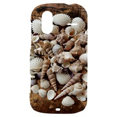 Tropical Sea Shells Collection, Copper Background HTC Amaze 4G Hardshell Case