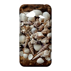 Tropical Sea Shells Collection, Copper Background HTC Droid Incredible 4G LTE Hardshell Case
