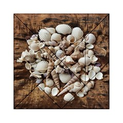 Tropical Sea Shells Collection, Copper Background Acrylic Tangram Puzzle (6  X 6 )