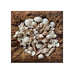 Tropical Sea Shells Collection, Copper Background Acrylic Tangram Puzzle (4  x 4 )