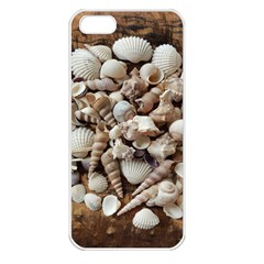 Tropical Sea Shells Collection, Copper Background Apple iPhone 5 Seamless Case (White)