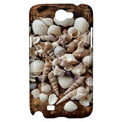 Tropical Sea Shells Collection, Copper Background Samsung Galaxy Note 2 Hardshell Case