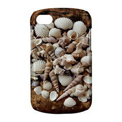 Tropical Sea Shells Collection, Copper Background BlackBerry Q10