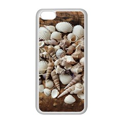 Tropical Sea Shells Collection, Copper Background Apple iPhone 5C Seamless Case (White)
