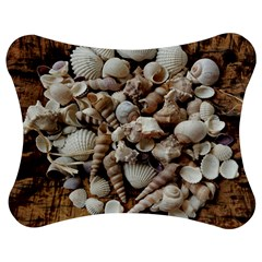 Tropical Sea Shells Collection, Copper Background Jigsaw Puzzle Photo Stand (Bow)