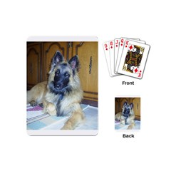 Puppy Belgian Tervueren Playing Cards (Mini)