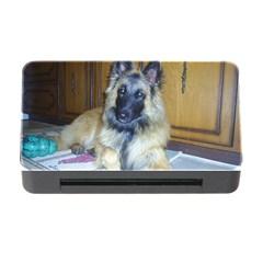 Puppy Belgian Tervueren Memory Card Reader with CF