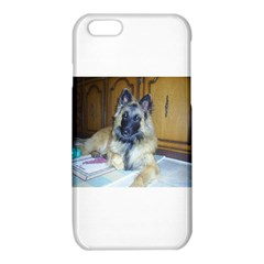 Puppy Belgian Tervueren iPhone 6/6S TPU Case