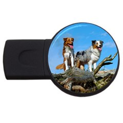 2 Australian Shepherds USB Flash Drive Round (1 GB)
