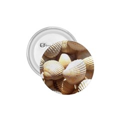 Tropical Exotic Sea Shells 1.75  Buttons
